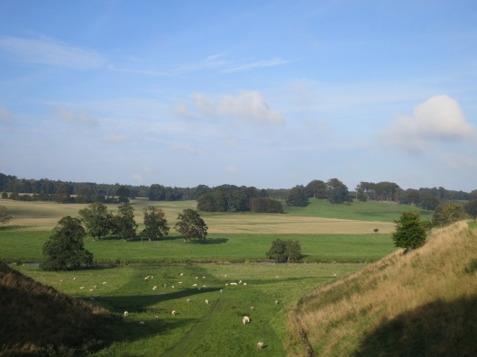 Countryside Surrounding Alnwick